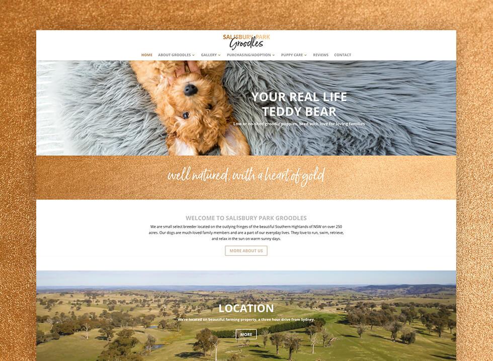 Salisbury Park Groodles